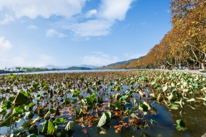 West Lake in autumn. (iStock)